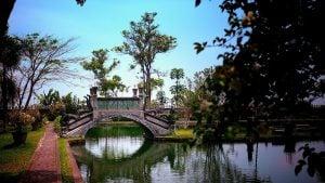 Indonesia Bali Kratom