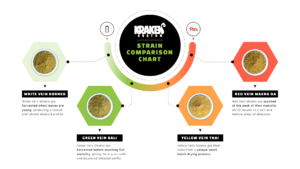 Kratom Strain Chart